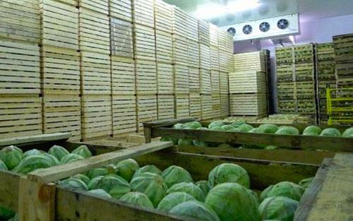 蔬菜冷库-04.jpg