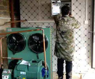 粉条冷冻库安装案例展示视频